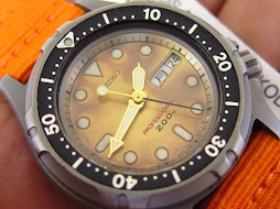 SEIKO DIVER PROFESSIONAL 200M BROWN GRADATION DIAL TITANIUM CASE - QUARTZ 7C43