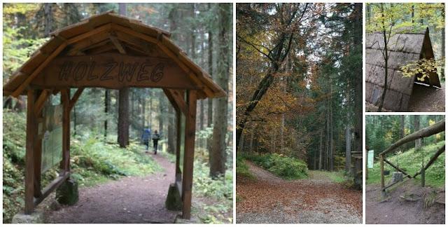 Baiersbronn, Schwarzwald, Urlaub, Familie, Erholung, Wandern, Sport