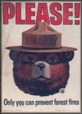 smokey-the-bear-classic.jpg
