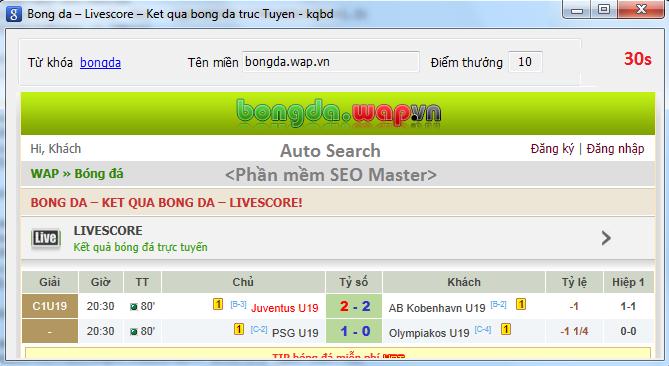 Cửa sổ Auto Search, Phần mềm SEO Master