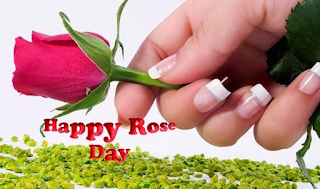 happy rose day photos