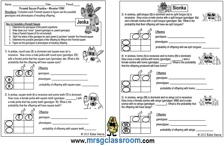Mrs Gs Classroom Genetics – Genetics Worksheet