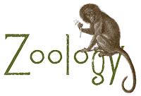 katalog harga Phy Edumedia untuk alat peraga zoologi