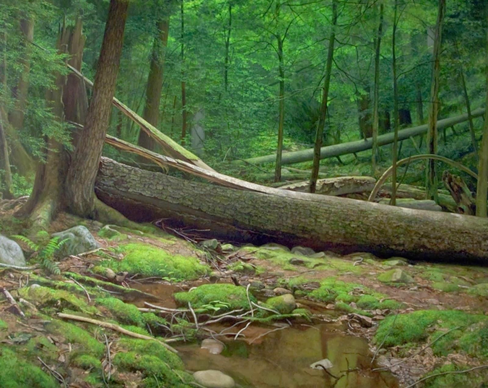 Image gallery naturaleza verde for Pintura verde agua