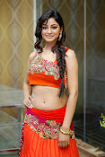 Shilpi Sharma Photos at Trisha Pre launch fashion Show-thumbnail-1