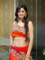 Shilpi Sharma Photos at Trisha Pre launch fashion Show-cover-photo