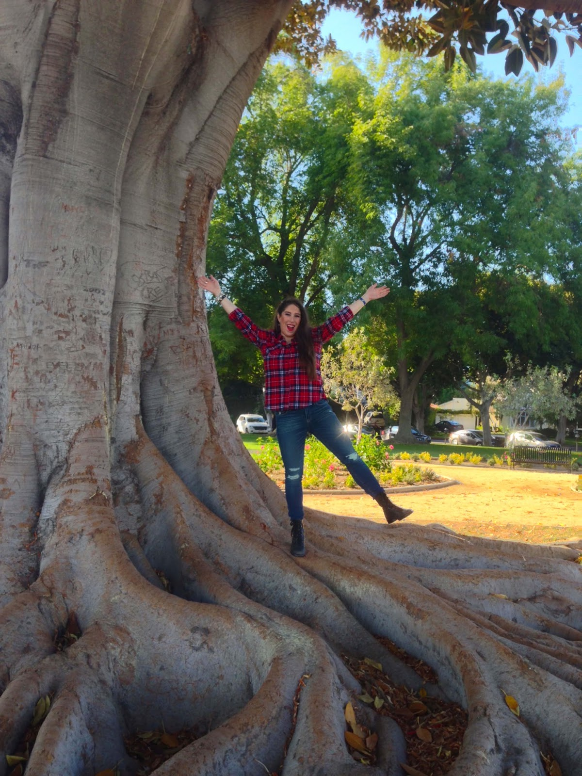 Marisa Stewart The High Heeled Brunette largest and oldest tree in Beverly Hills  Wearing Lucky Jeans and Marc Jacob Shoes