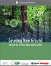 State of Forest Carbon Market 2013