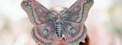 Couverture facebook HD j'aime les papillons