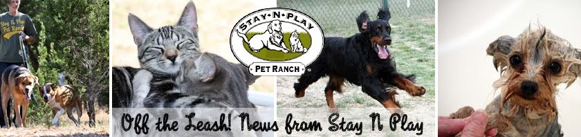 Off the Leash! News From Stay N Play: The Official Blog of Stay N Play Pet Ranch