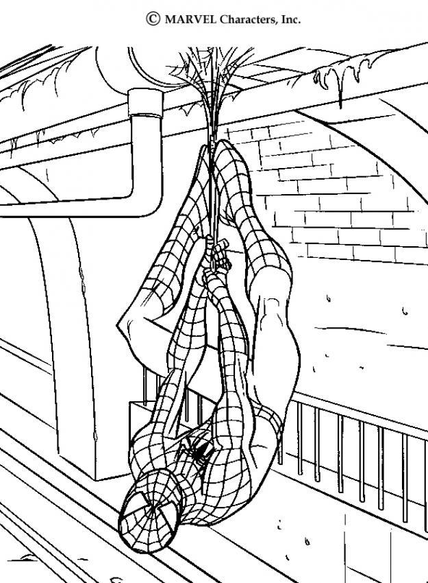 Malvorlagen Ausmalbilder Spiderman: Spiderman Dibujos Para Colorear