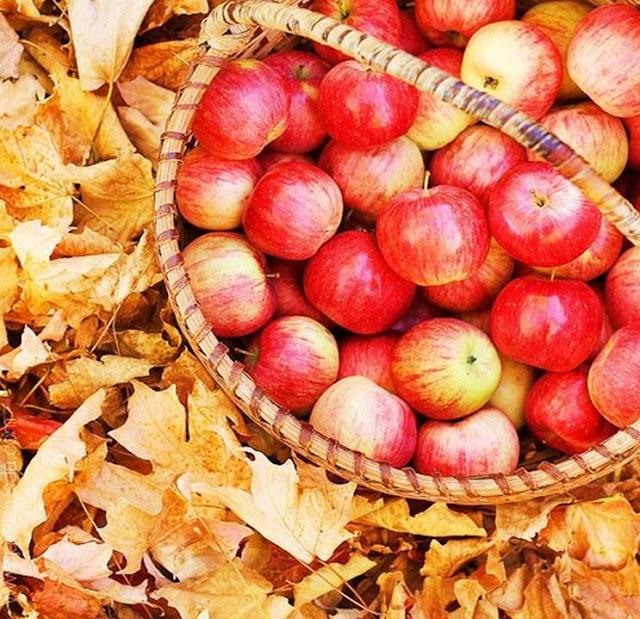 maçãs diabetes
