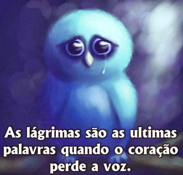 As lágrimas são -as Ultimas palavras quando o coração pperde a voz Tudo Nosso