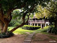 MUSEO SUAN PAKKAD PALACE, BANGKOK. TAILANDIA