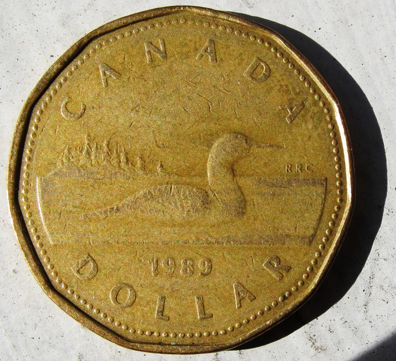 Canadian Dollar Coins Stock Images - dreamstime.com