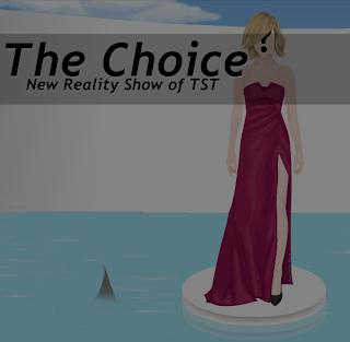http://thestardolltribute.blogspot.com.br/2013/11/the-choice-escolha.html