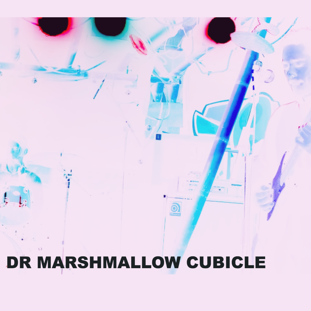 Dr Marshmallow Cubicle
