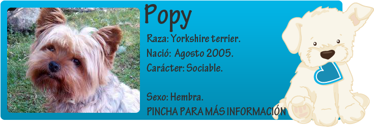http://mirada-animal-toledo.blogspot.com.es/2014/08/popy-puro-ejemplo-de-irresponsabilidad.html