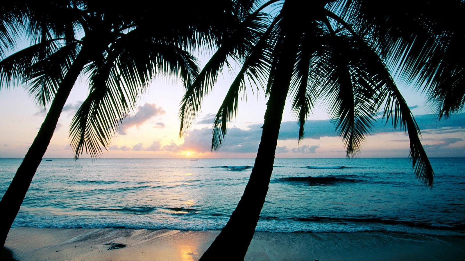 Paisajes Atardeceres Hermosos - paisajes hermosos Atardecer en Raiatea Polinesia Francesa