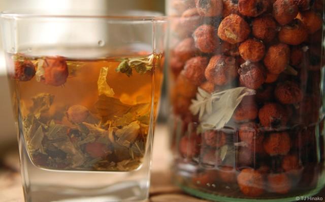herbatka z owoców głogu