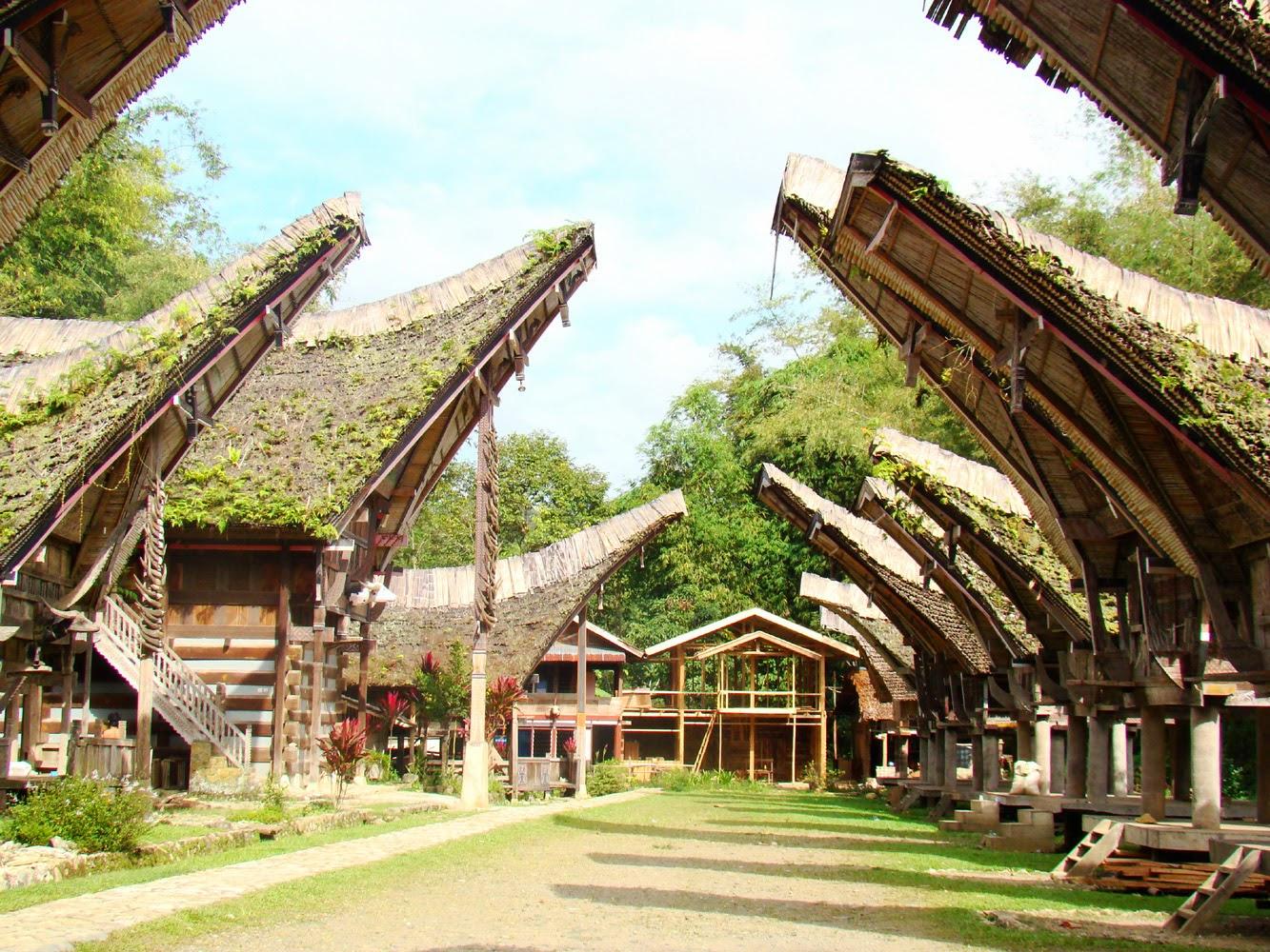 Forest House December 2013 Kopi Arabika Solong Aceh By Viziq Nad Meski Tak Setenar Toraja Daerah Di Sekitarnya Juga Produsen Bermutu Kalosi Enrekang Dan