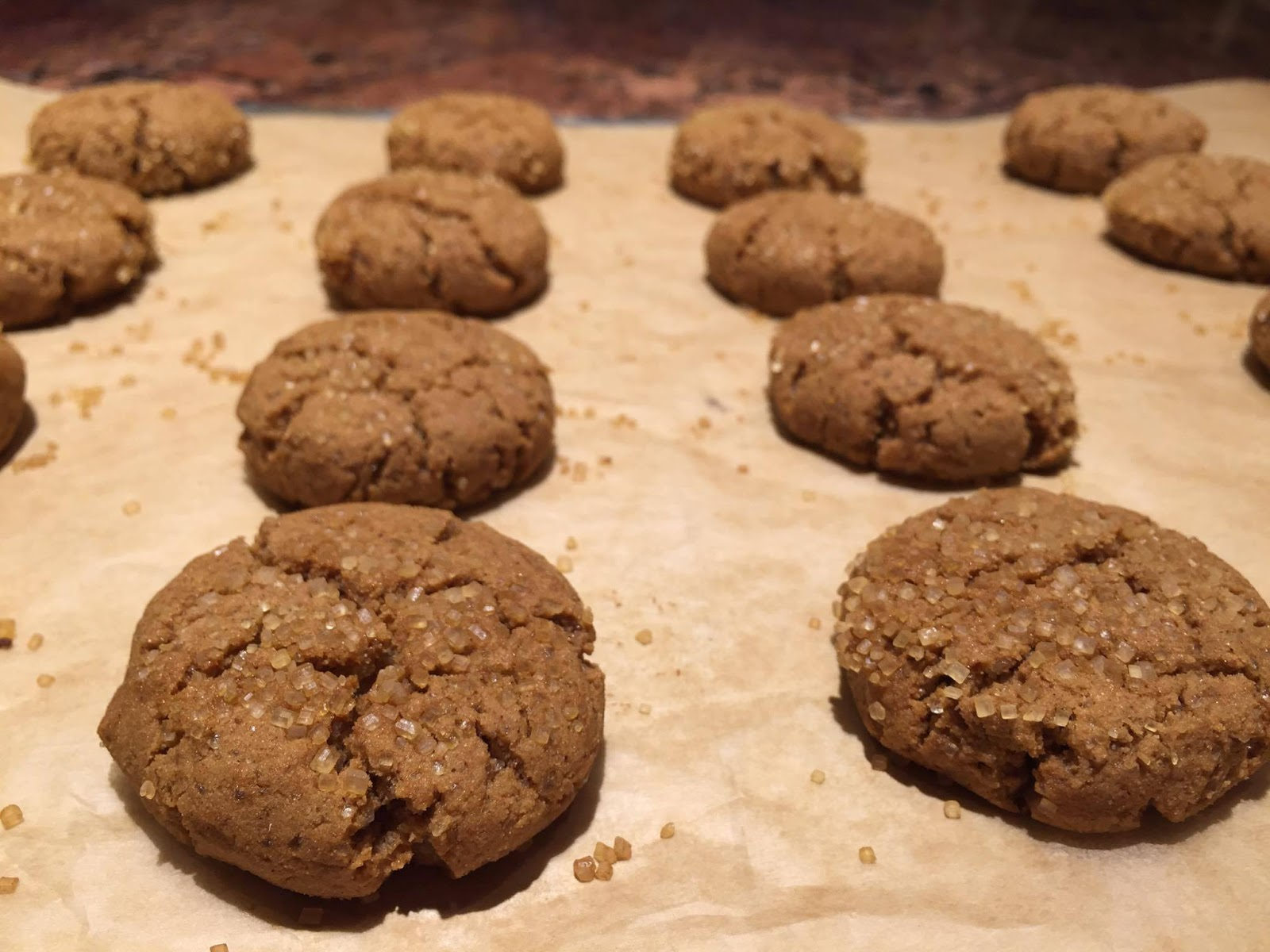 Paleo Rebel: Banana Flour Ginger-Molasses Cookies