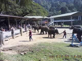 CHIANGMAI TOUR SERVICE TO JOAN'S FAMILY ON 26TO29 DEC 2013 ChiangMai Tour By Local ChiangMai Tour Guide - www.chiangmai4u.com