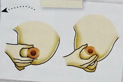 Perah Susu Guna Tangan atau Teknik Marmet