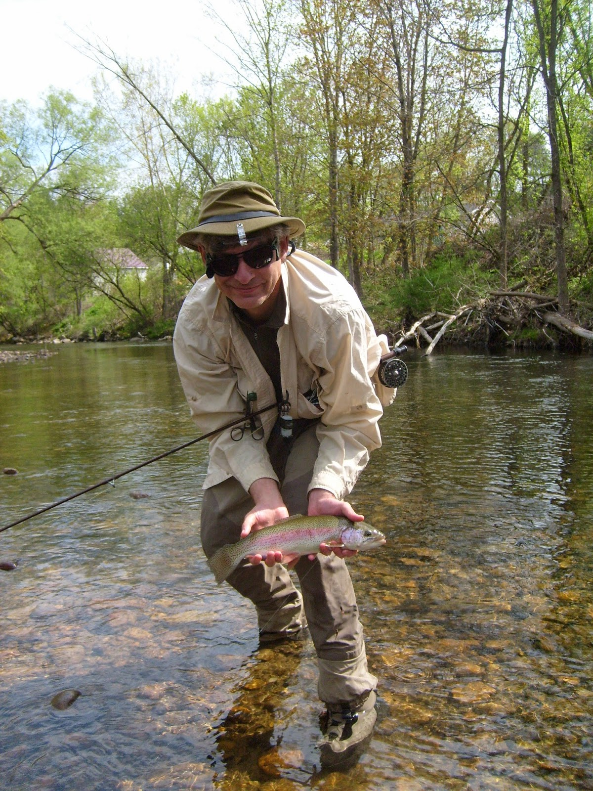 Vermont fly fishing hendricksons are hatching for Vermont trout fishing