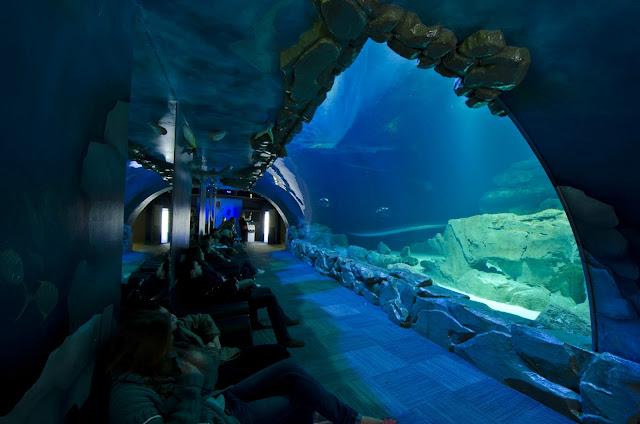 Aquarium Cinéaqua, Paris
