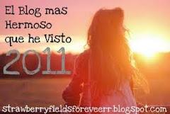 Premio  Blog más Hermoso 2011