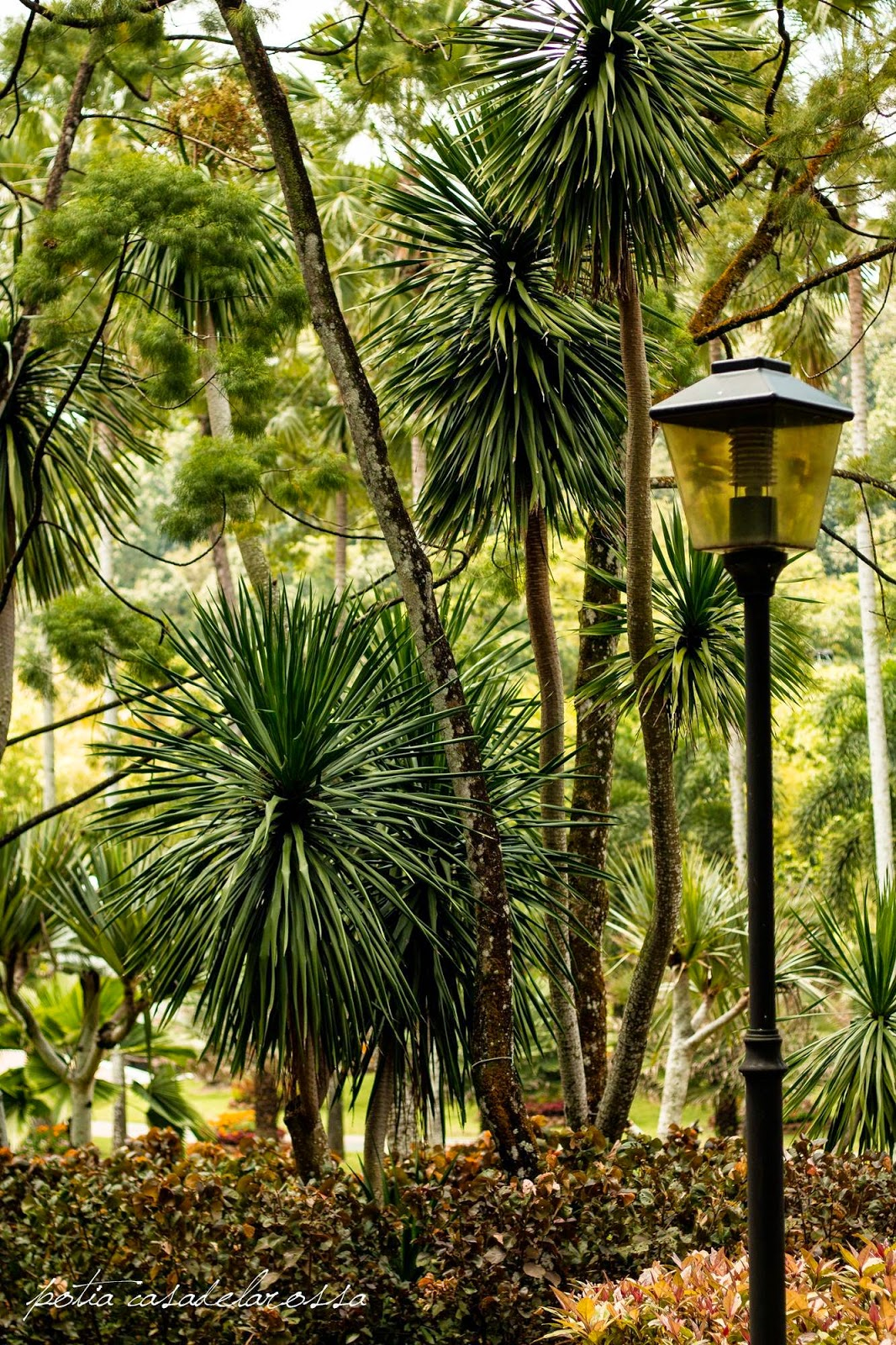 Taman Botani Perdana Kuala Lumpur