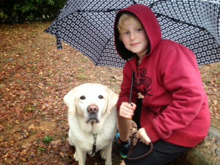 Yellow Lab Bryant sits under an umbrella with Rebecca's young son wearing a red hooded sweatshirt.