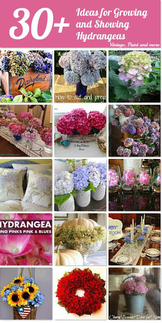 Vintage, Paint and more... hydrangea collection
