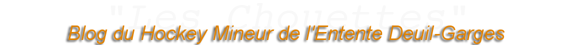 (2013) Les Chouettes, blog du hockey mineur de l'Entente Deuil Garges