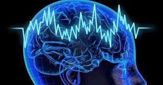 Brains take the most familiar roads?
