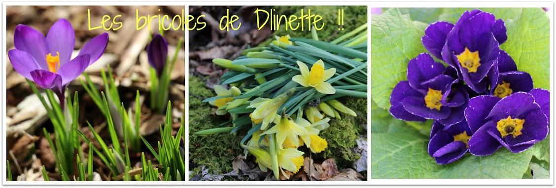 Les Bricoles de Dlinette !