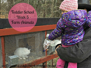 Toddler School Week 5 Farm Animals