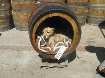 Raising toot and roxy dog house idea for cheap for Barrel dog house designs