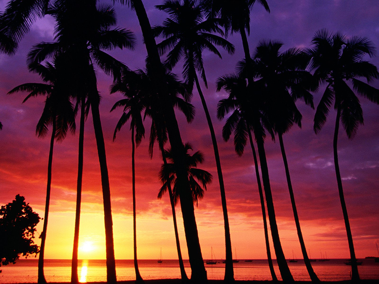http://4.bp.blogspot.com/-Lmb085OOfLk/TxMqZYLFMeI/AAAAAAAAAGw/W1Bo_S4mfOw/s1600/sunset_spectacular-normal.jpg