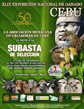 SUBASTA DE SELECCION, VILLAHERMOSA TABASCO, MÉXICO 2012