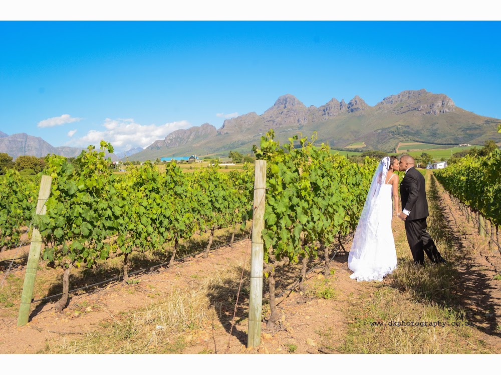 DK Photography Slideshow-294 Lawrencia & Warren's Wedding in Forest 44, Stellenbosch  Cape Town Wedding photographer
