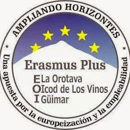 Proyecto ERASMUS + Consorcio EOI