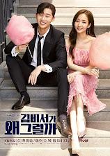Şu an İzlediğimiz Kore Dizisi^^♥Secretary Kim♥