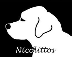 Nicolittos