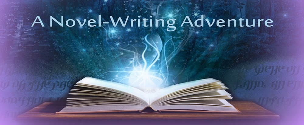 A Novel-Writing Adventure