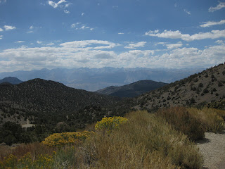 View of the Eastern Sierras from White Mountain Road, California
