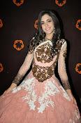 Kanika Kapoor glamorous photos-thumbnail-5