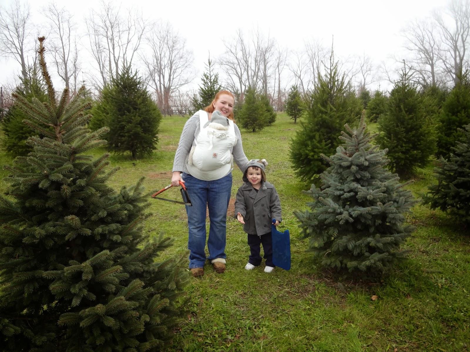2304 Miles Christmas Tree Farms Old Stone Farm And Evergreen Acres - Christmas Tree Farm In Virginia