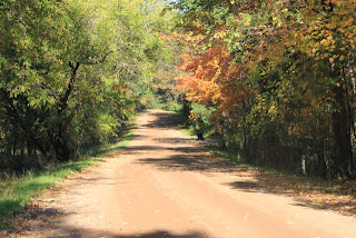photo of country road in Autumn